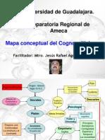 Mapa Del Cognoscitivismo2628