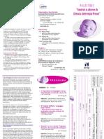 Prog. Palestras Literacia IP 2011 Vf