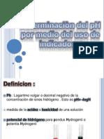pH Pactica 1