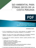 Presentación Walter Huaylinos