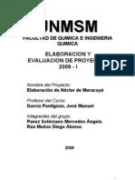 17661057 Proyecto Elaboracion de Nectar de Maracuya