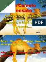 CAMELO SENSATO