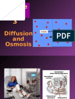 Chapter 3 - Diffusion & Osmosis