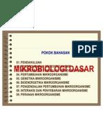03-1 Struktur Dan Fungsi Sel Prokariot