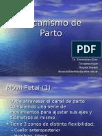 Mecanismo de Parto 2007