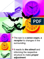 Chapter 14 - Animal Receptor Organs (the Eye)