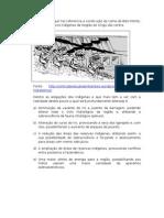QUESTÕES PARA AULÃO ENEM 2011-2012