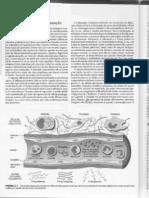 Capítulo 2 - Inflamação aguda e crônica - Patologia