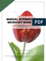 word2007intermedio