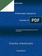 3eraclase-Giardia Salud Ambiental