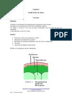 Estrutura, anexos e pigmentação da Pele
