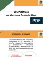 Competencias Del Maestro de Educacion Basica