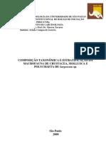COMPOSIÇÃO TAXONÔMICA E ESTRATIFICAÇÃO DA MACROFAUNA DE CRUSTACEA MOLLUSCA E POLYCHAETA DE SARGASSUM SP.