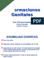 22 Malformaciones Genitales