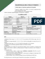 24 Neoplasia Intraepitelial Del Cuello Uterino