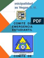 Capacitacion CEE- Institutos CODEM