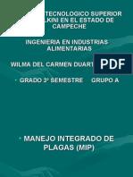Que es MIP
