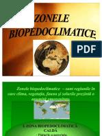 zona_calda1