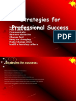Strategies for Professional Success