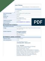 CV Saul Vasquez Curriculum