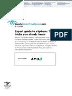 AMD sServerVirt IO#101334 E-Guide 081211
