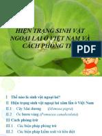 Sermina 18 - Hoan Chinh Hon NXPowerLite