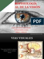 NEUROFISIOLOGÍA CENTRAL DE LA VISIÓN_Estudiantes
