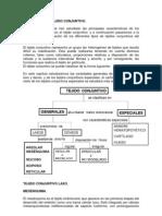 tejidoconjuntivovariedades3_1