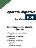 Digestivo1