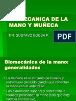 BIOMECANICA DE LA MANO Y MUÑECA