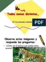 Todos Somos Distintos...y Los Animales TambiÉn(26!09!08)