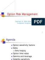 Derivatives > Option Risk Management