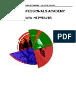 Academia-Netweaver Dicas de Estudo