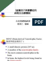 腦源神經滋養因子與憂鬱症的病理及治療機制070411