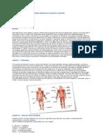 O Treinamento eficaz da musculatura abdominal na ginástica localizada