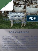 HISTORIA Y CLASIFICACIÓN TAXONÓMICA DE LOS CAPRINOS