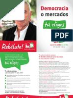 Dipitco_Elecciones20N