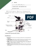 Ficha informativa nº 3 - Microscópio óptico