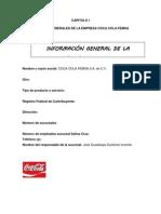 Proseso de Consultoria Coca Cola
