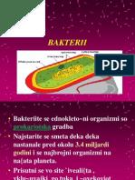 Бактерии -општи карактеристики