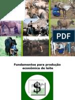 Fundamento para Exploração Econômica - Prof. Vidal - Junho 2010