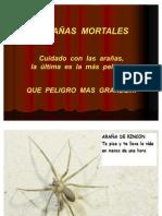 Arañas+Mo[1]..