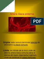 Artera iliaca externa