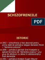 24537499 Schizofrenia Curs
