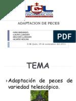 ADAPTACION DE PECES