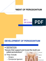 Development of um