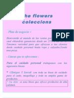 Plan de Ventas Por Catalogos y Colecciones