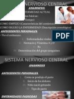 Sistema Nervioso Central Ruben Montes