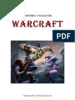 Warcraft Historia