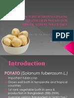 Agrobacterium-mediated Gene Transfer in Potato For